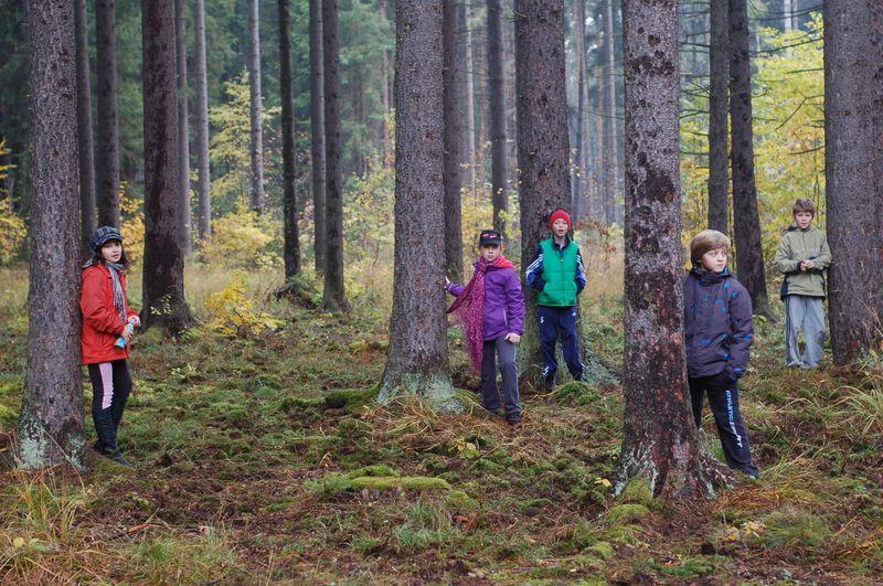 Lesy RS Štědronín - Dětské tábory Kazimírka